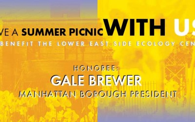 Annual Summer Picnic Fundraiser!