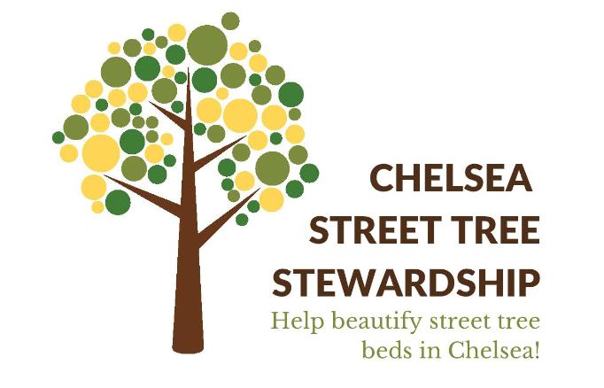 Chelsea Street Tree Stewardship