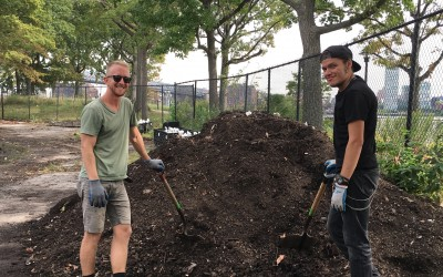 FREE Compost Giveaway