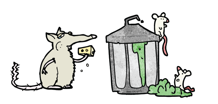 Rat Prevention for Community Composting!